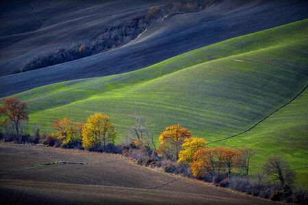 Tuscan hills in Autumn, Tuscan landscape. Tuscany, Italy
