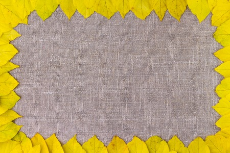 Autumn. Border frame of yellow autumnal leaves on cloth background Фото со стока