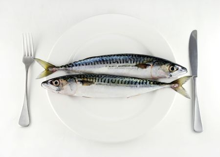 fishy: two mackerel on a white plate with knife and fork