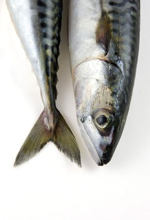 the head and tail of a mackerel Stock Photo