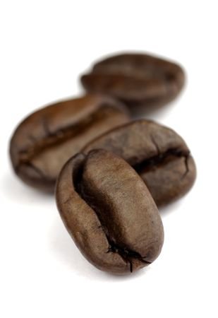 small row of coffee beans with SDOF on white background Stock Photo