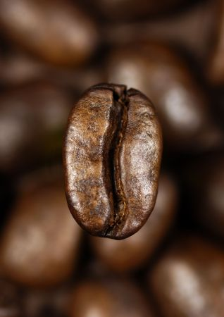 single coffee bean on a background of blurred coffee beans Stock Photo - 2827208