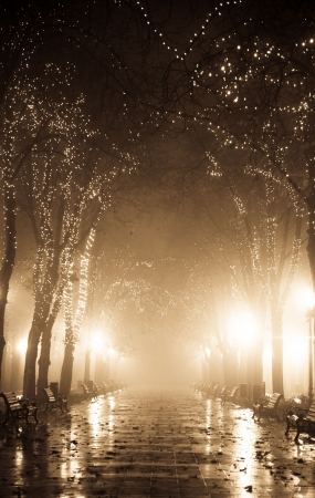 Night alley with lights in Odessa, Ukraine. Photo in old image style.  photo