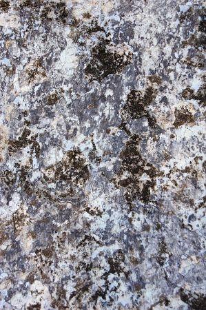 sheetrock: dark mould at wall