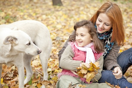 Two sisters sitting on the leafs in the park and looking at dog. Outdoor shot. photo