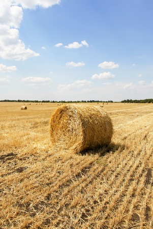 Straw bales in a field with blue sky  Stock Photo - 9129294