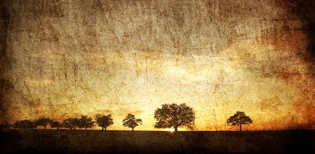 Baum im Sommer Feld. Photo in old image style.