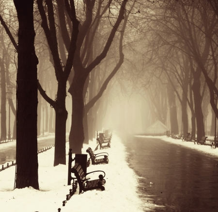 Winter alley in Odessa, Ukraine. Stock Photo