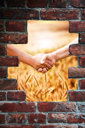 Two farmers hands handshake at the harvest of wheat field backside the abstract wall photo
