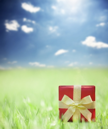 Present on grassy background. photo