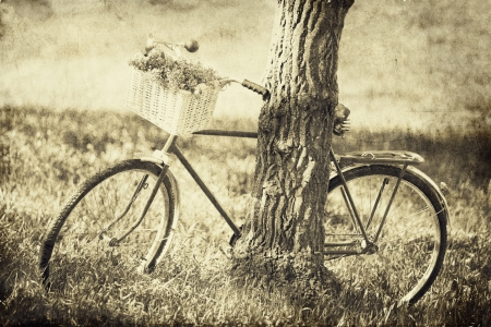 Vintage bicycle waiting near tree. Photo in old image color style. 版權商用圖片
