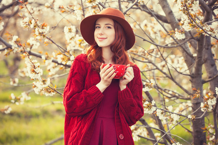 Portrait of a beautiful redhead women in red sweater and hat with cup in blossom apple tree garden in spring time on sunset. photo