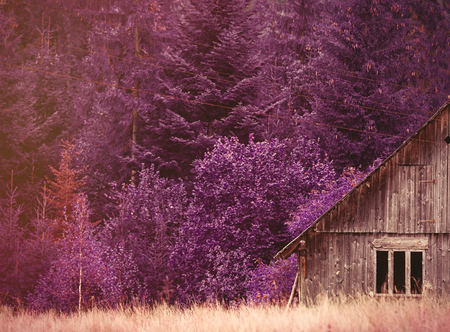 ridgeline: Old house in Ukraine Carpathian mountains. Photo with violet filter Stock Photo