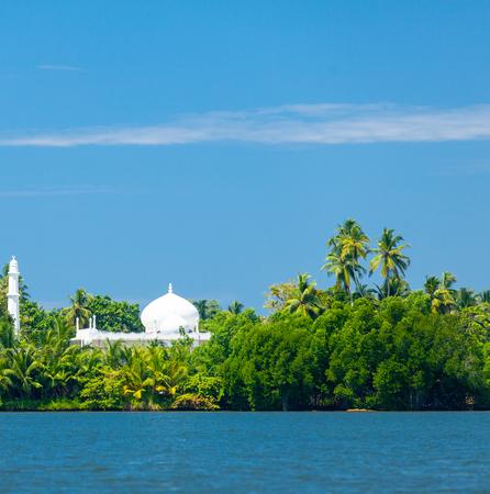在热带海岛海岸的清真寺