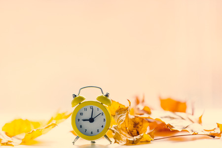 hands  hour: Vintage alarm clock with leaves and bokeh