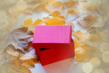 Little gift box with autumn maple leaves on table