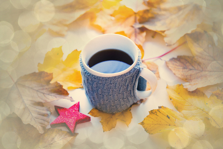 Cup of coffee or tea with star shape toy and autumn maple leaves on background