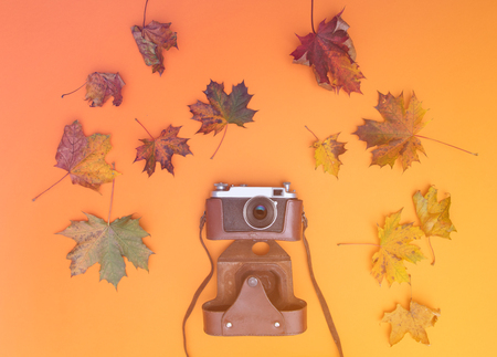Above view at vintage camera with autumn maple leaves around it
