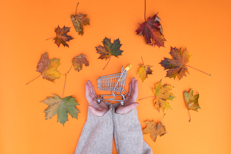 Above view at hands holding shopping cart with autumn maple leaves around it Stock Photo