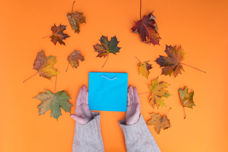 Above view at female hands holding shopping bag with autumn maple leaves around it Stock Photo