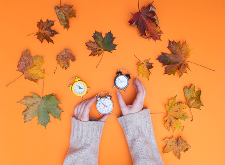 Above view at hands holding alarm clock with autumn maple leaves around it