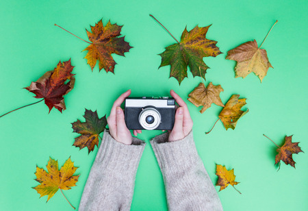 Female hands holding vintage camera around maple leaves on green background Stock Photo