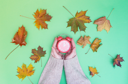 Female hands holding vintage alarm clock and maple leaves around on green background