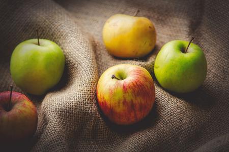 Apples on jute sack background. Autumn season harvest