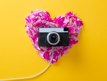Pink and purple flower petals in heart shape and camera on yellow background.