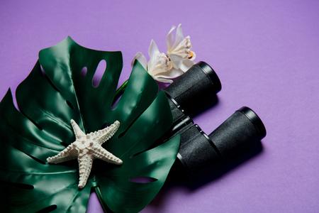 black binoculars and palm leaf on purple background