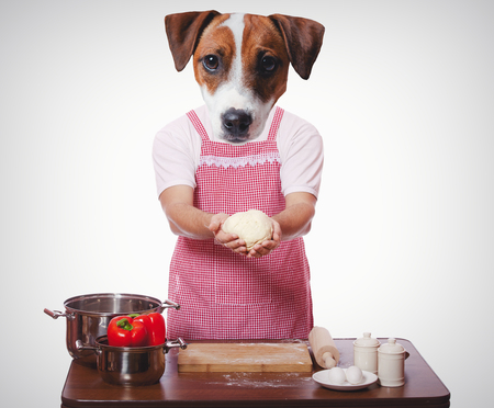 anthropomorphic dog trying to cooking on white background Stock Photo