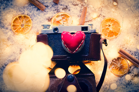 Vintage photo camera and lemons with cinnamons on snow and fairy lights background
