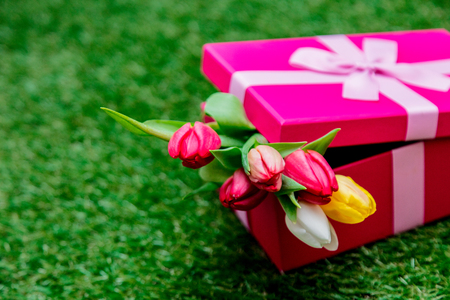 Beautiful pink gift box and tulips on green grass lawn Фото со стока - 114884201
