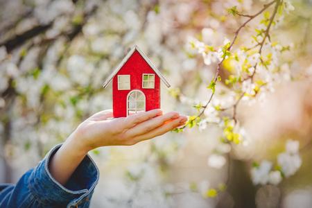 Female hand holding red little house near flowering tree. Spring season