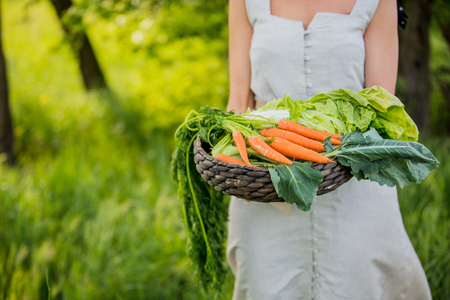 Young woman with vegetable basket at spring time outdoor Standard-Bild - 122874878