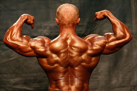 Bodybuilder Back Double Biceps Stock Photo - 409481