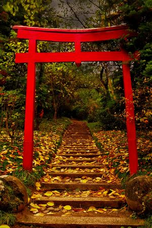 torii: Torii Gate in autumn scenery