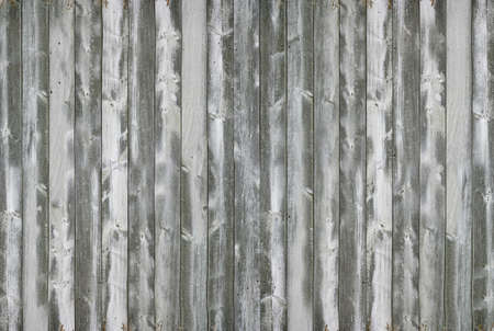 Close-up of gray wood texture.Texture or background