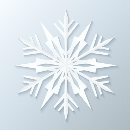 snow flake: Paper Snowflake. Vector Illustration.