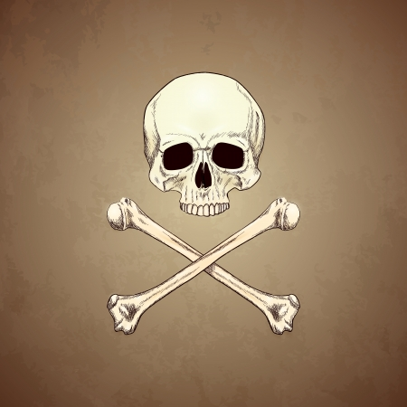 Human Skull and Bones on Old Paper Background   Vector