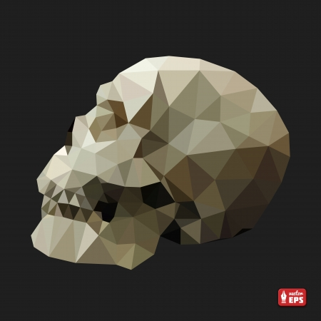 Human Skull in a Triangular Style  Vector Illustration  Vector