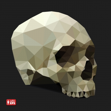 skull vector: Human Skull in a Triangular Style  Vector Illustration