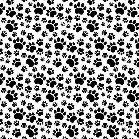 cat paw: Traces of Cat Seamless Isolated on White Stock Photo