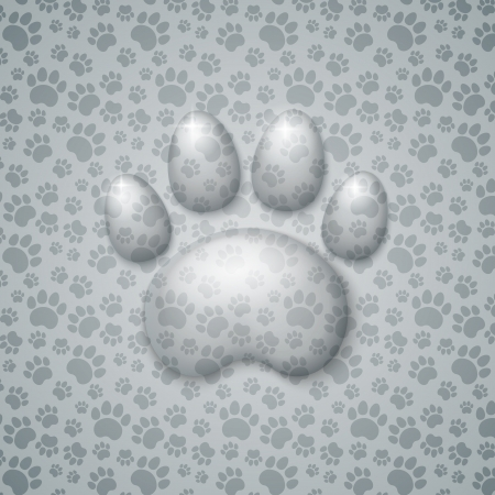 sheer: Trace Cat in the Form of Droplets Water with Shadow on Seamless Light Gray Background
