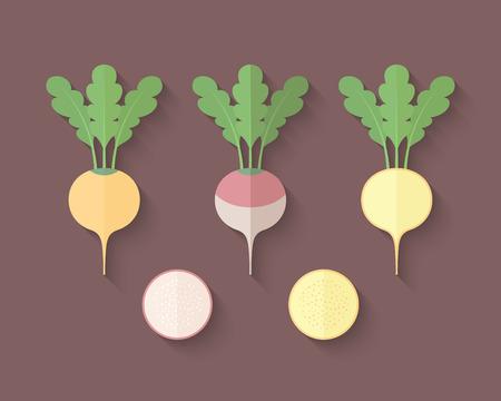 Eine Reihe von Gemüse in einer Wohnung Art mit einer schrägen Mischung Shadow - Rübe und Steckrübe Illustration