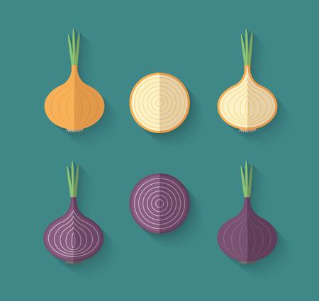 Een set van Groenten in een vlakke stijl met een schuine Blend Shadow - Onion Vector Illustratie