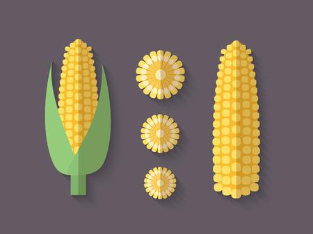 mazorca de maiz: Un conjunto de verduras en un estilo plano con una sombra Blend Oblique - Espiga de trigo Vectores
