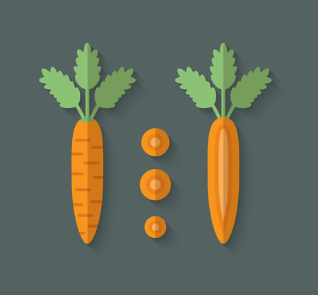marchew: A set of Vegetables in a Flat Style with an Oblique Blend Shadow - Carrot