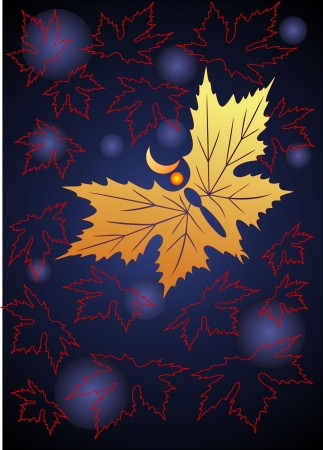 The butterfly flies at night  maple