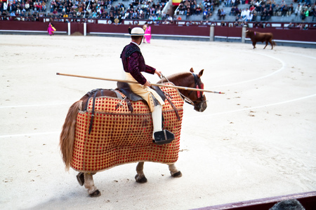 MADRID, SPAIN - OKTOBER 17: The horseback picador continues to stab the bulls neck leading to the animals first major loss of blood and makes him ready for the next stage. Oktober 17, 2010, Spain